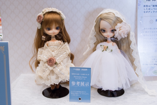 PC100464-idoll51.jpg