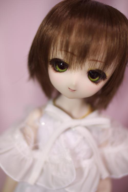 P1040228_komomo.jpg