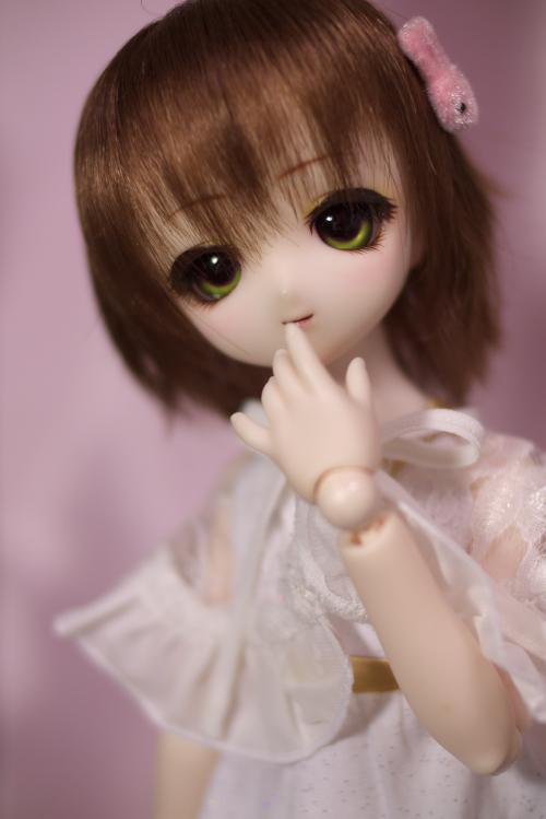 P1040231_komomo.jpg