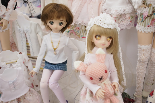 P2242831_dollshow_y.jpg
