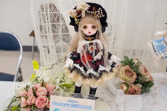 P3246904-idoll55.jpg