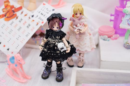 P3246921-idoll55.jpg