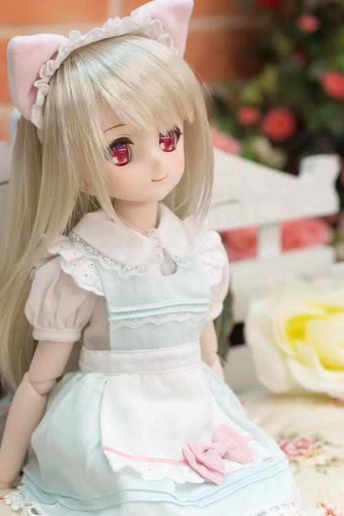 P4260938-sumika.jpg