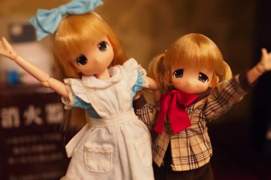 P5195849_ichigo.jpg