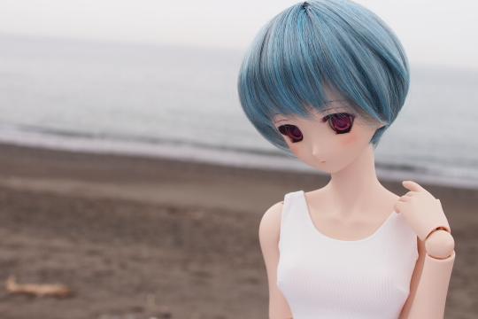 P6246273_sakunon.jpg
