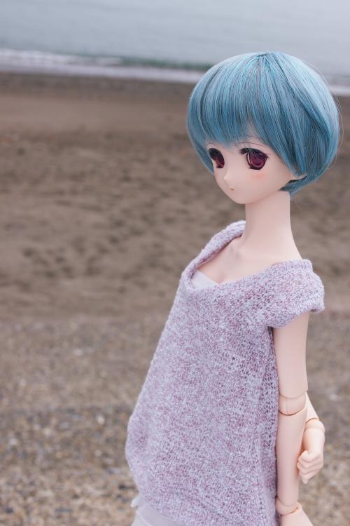 P6246278_sakunon.JPG