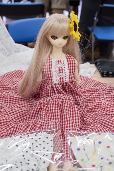 P7132205-idoll.JPG