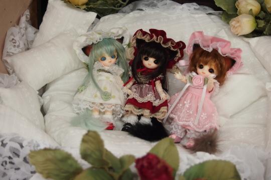 P7226592_idoll35.jpg